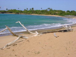 Whether you love a crowd or you'd rather sunbathe in solitude, you'll find a beach just for you in Piñones.