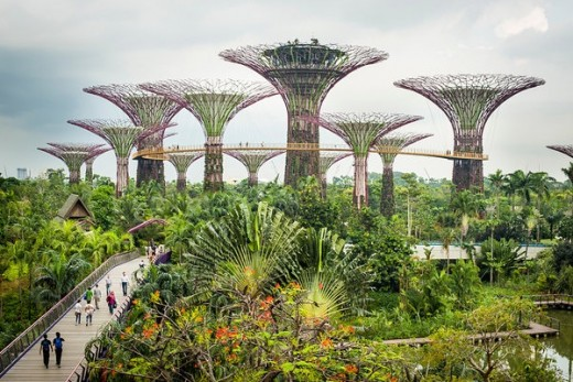 Singapore Vertical Farms