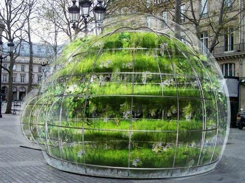 pop-up greenhouse by Amaury Gallon