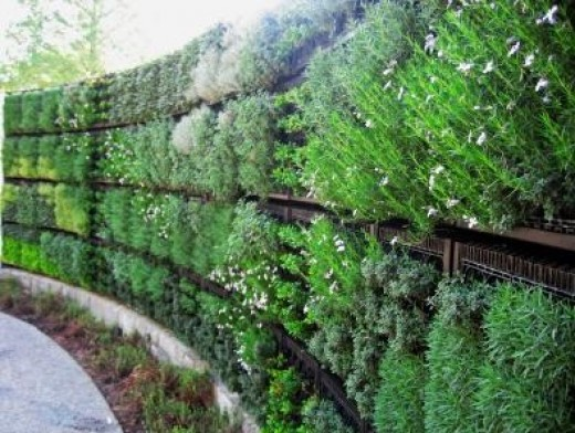 Agritecture Or Vertical Farming A History And Present