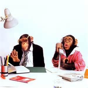 Monkeys at Work