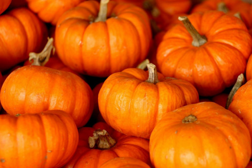 Pumpkin is a very nutritious food which can be served as a vegetable or used in baked goods.