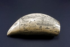 The Beauty and History of The Scrimshaw