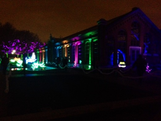 Multi colored lights at the Linnnean House area