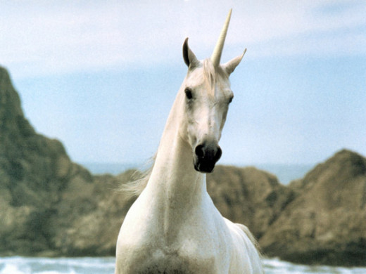 Unicorns In The Bible: Do Unicorns Really Exists In The Bible?