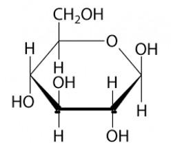 Biomolecules - Carbohydrates
