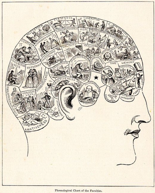 We likely think more about what to change in other people.  (Old debunked Phrenology chart)