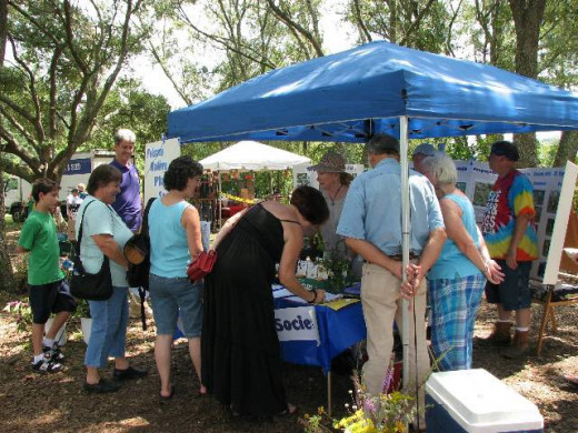 The Folsom Native Plant Society displays information and photos and gives wildflower seeds out.