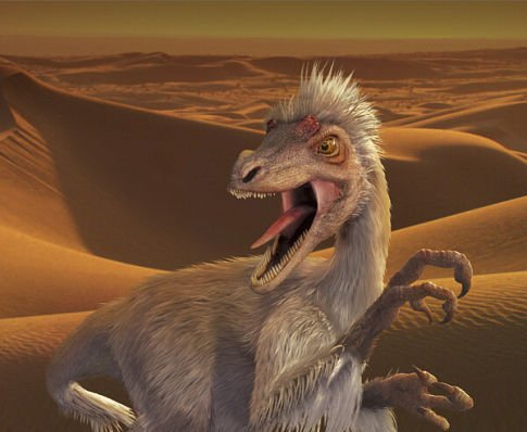 ...... This is a velociraptor.