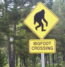 Why Bigfoot Can't Exist