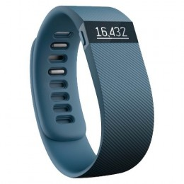 Fitbit Charge in Slate