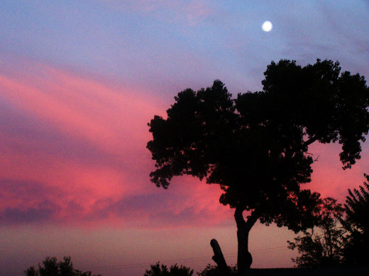 Restful sunsets await...