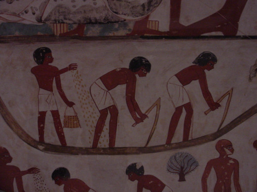Egyptian wall painting showing men farming.
