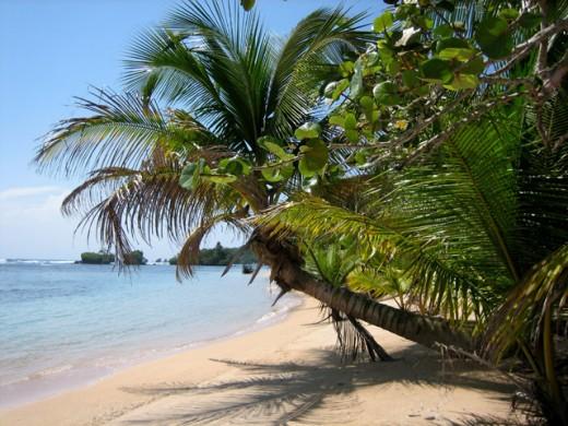 Costa Rica Shores