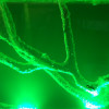 subatomiclex profile image