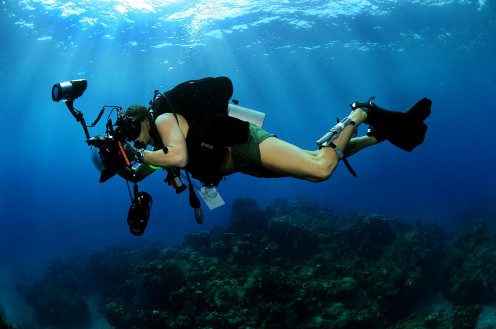 Underwater photographer in action