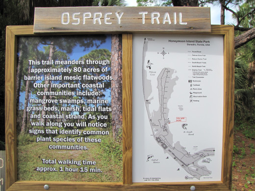 The Osprey Trial