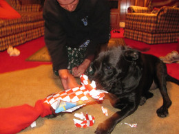 Maddie opening Christmas presents