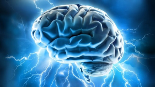 The brain is a marvel and the frontal lobes are the largest parts of it.