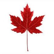 CanadaCass profile image