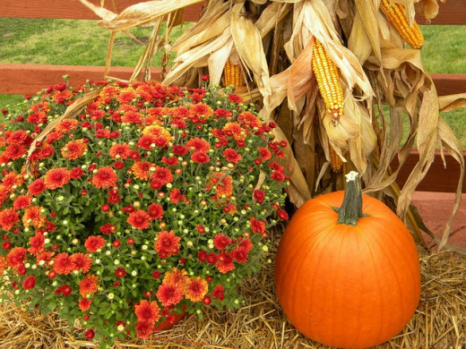 Autumn harvest arrangement