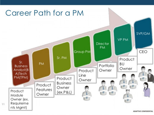 The career path of a product manager.