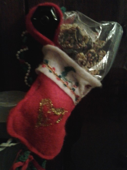 At Christmas, my girl decorated a tiny stocking just for me and Santa left me a special treat