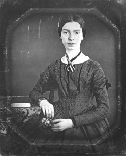 Emily Dickinson and Possibility