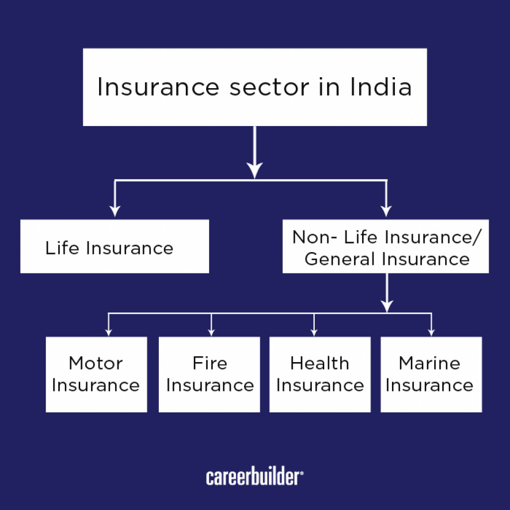 reasons for privatisation of insurance sector in india The insurance industry of india consists of 57 insurance companies of which 24 are in life insurance business and 33 are non-life insurers among the life insurers, life insurance corporation (lic) is the sole public sector company.