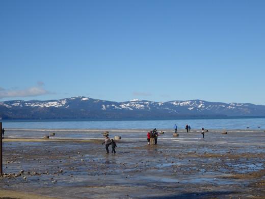 A Nearly Frozen Lake