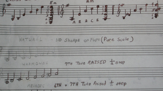 These are the notes that make up the three chords in E Minor.