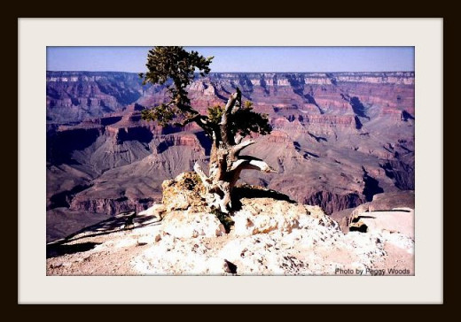 I created a stone lithograph using this picture that I took at the Grand Canyon as my subject matter.