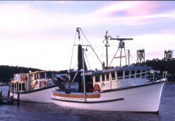 Clyde River boat rides