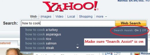 "Yahoo ""Search Assist"""