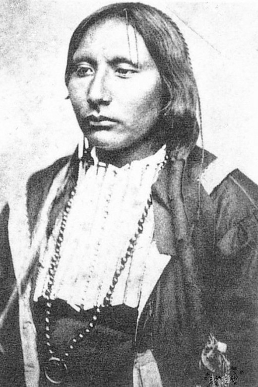 Big Tree Kiowa chief. used for illustration, but does not represent any actual characters in the story Galvanized Yankee during the civil War