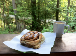 Oh glorious cinnamon buns; in Egmont at the The Green Rosette Bake Shop,  now known as the The Skookumchuck Bakery + Cafe.