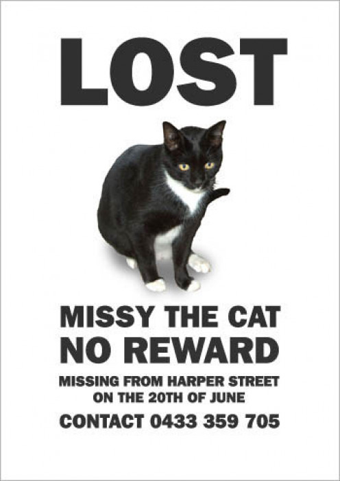 A decent cat GPS tracker will enable you to find a lost or stolen cat