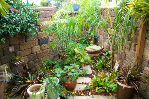 "My ""Secret Garden"""
