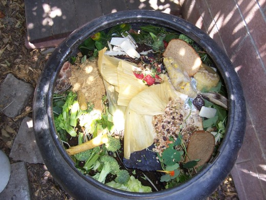 All foods can be recycled by mulching or worms bins.