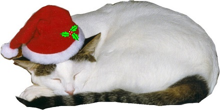 Abigail in her Santa hat is on cards, bags, T-shirts, pillows and more.