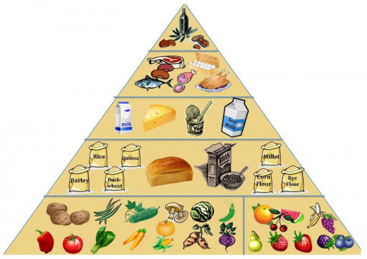 Nutrition Pyramid showing reccommended amounts of food items to incorporate into life-style.along with exercise at least 3 times a week.