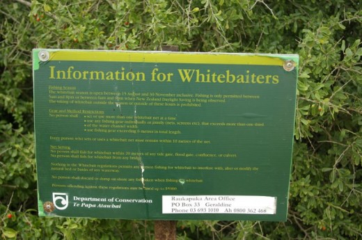 Whitebait Sign