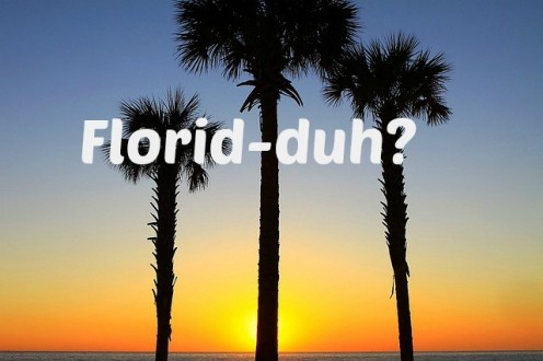 In some ways, Florida has earned it's nickname, Flori-duh.