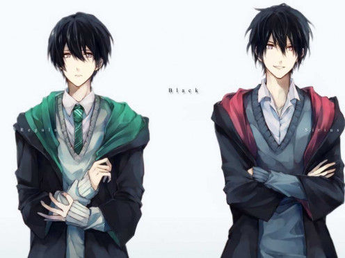 This is Sirius Black from the Harry Potter series by J.K. Rowling, anime-style. In this pic, you can also see his younger brother, Regulus Black, who clearly takes after his bro in terms of looks (Sirius is still hotter, though, isn't he?)