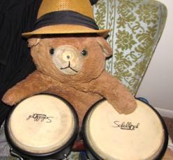 The Secret Life of Teddy Bear