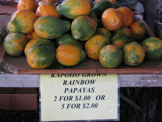 Local Grown Organic Solo Papayas