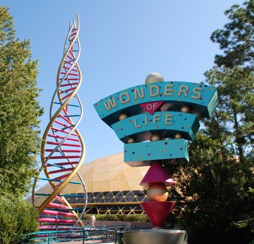 Exploring the Wonders of Life had never been easier.