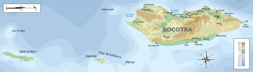 There are four islands in the Socotra archipelego. Socotra Island is by far the biggest land mass in the group.