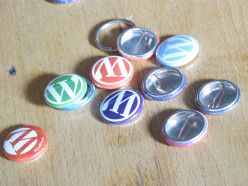 10 Tips For Choosing a WordPress Theme For Your Website or Blog