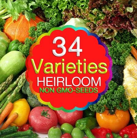 Organic Heirloom Seeds Non-gmo Non-hybrid